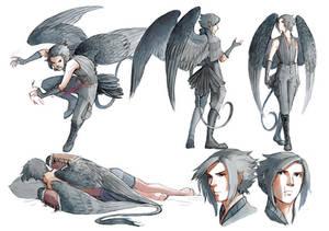 Leader of the Black Wings