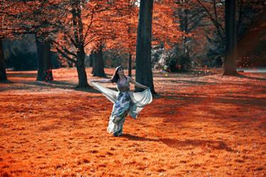 Autumn Leaves by EvranOzturk