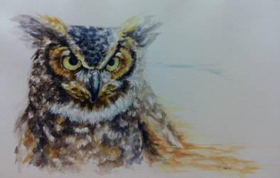 Expressive Animal Portrait- Great Horned Owl by LemonGecko
