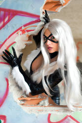 Black Cat is so cool