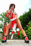 Mai Shiranui beautiful ninja