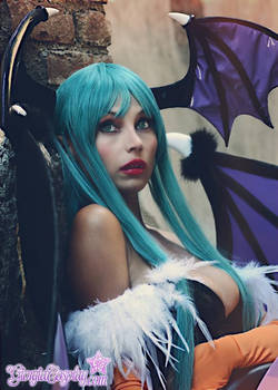Morrigan Vampire Savior Darkstalkers,yes that's me