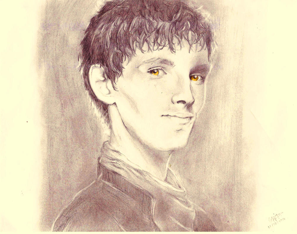Merlin by deviantlamb