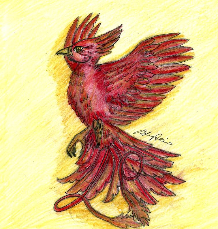 Fawkes the phoenix harry potter by brenda amancio on deviantart fawkes the phoenix harry potter by brenda amancio voltagebd Gallery