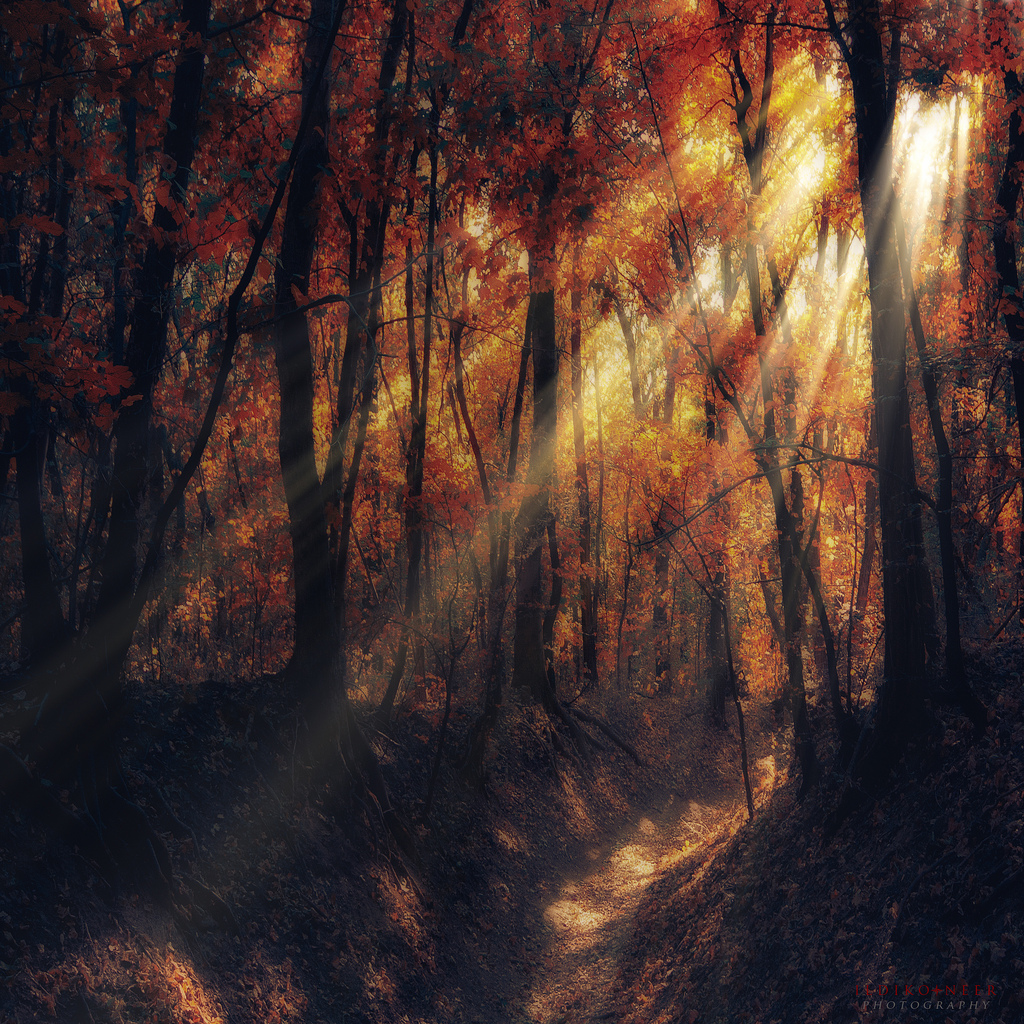 if you smile... by ildiko-neer