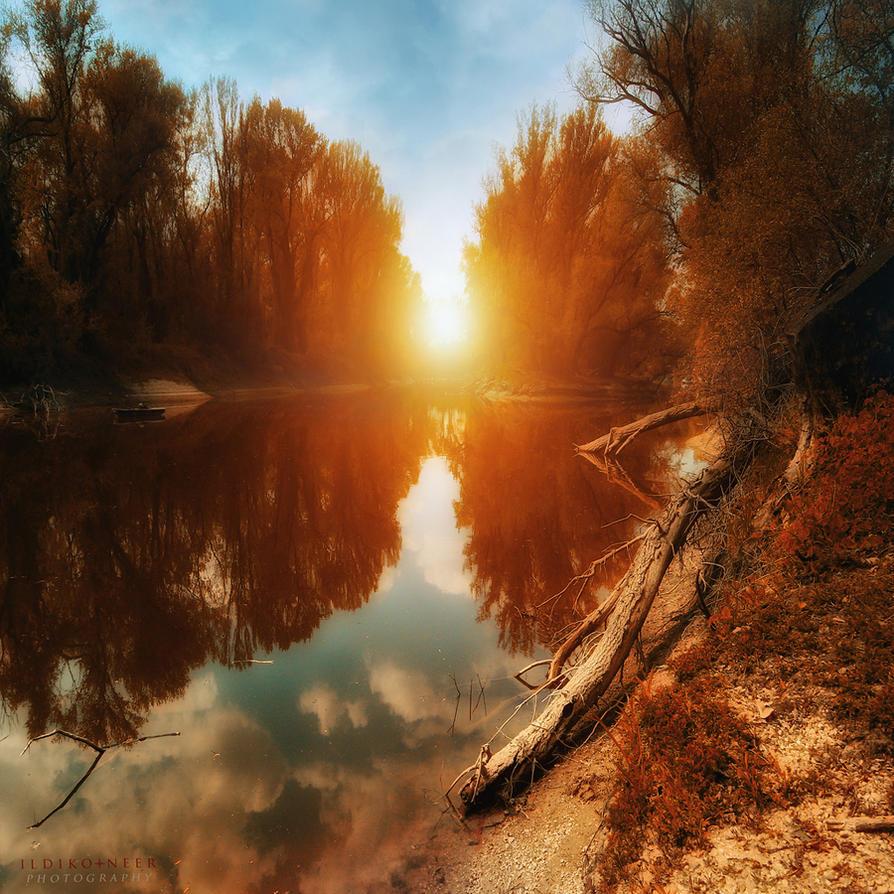 stillness by ildiko-neer