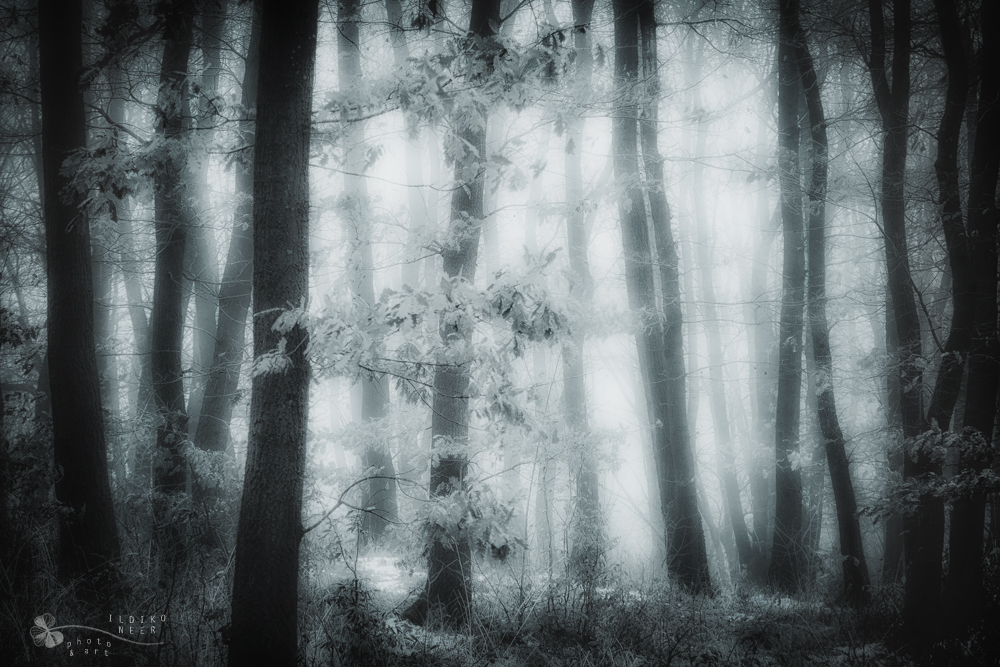 close encounters of the third kind by ildiko-neer