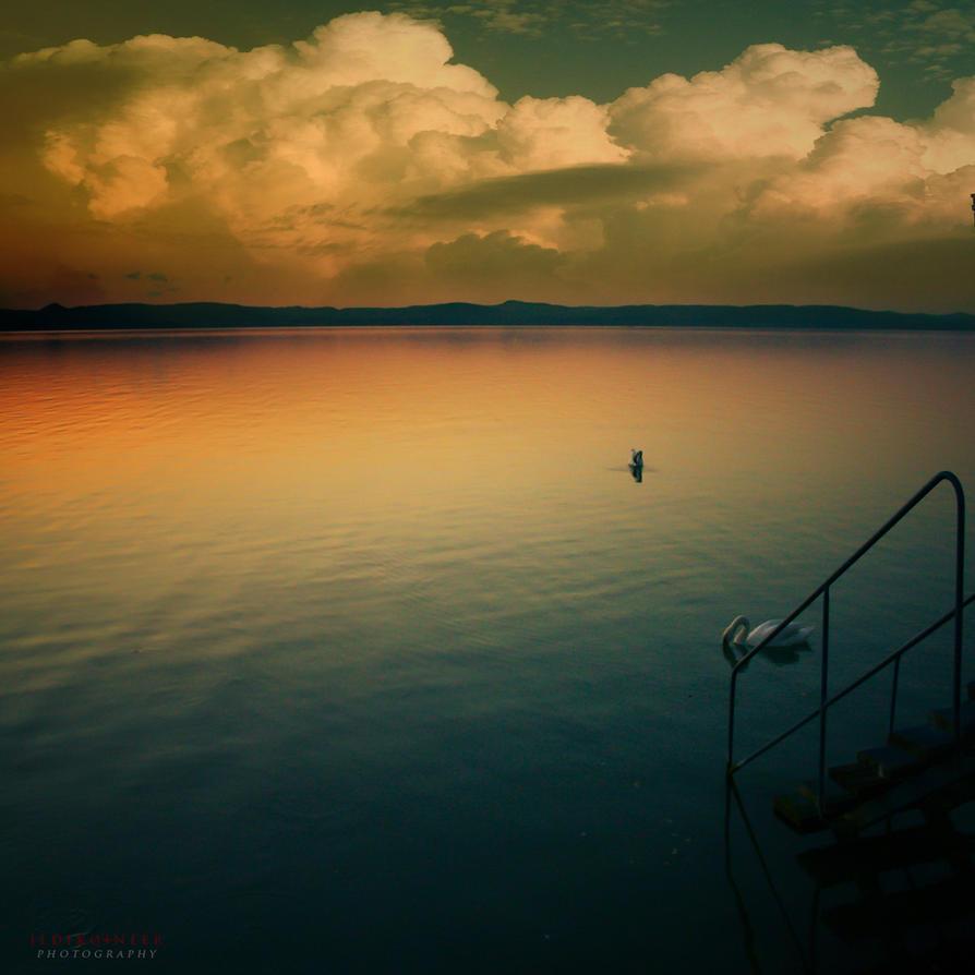 silent evening by ildiko-neer