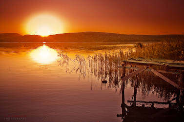 feel the sun by ildiko-neer