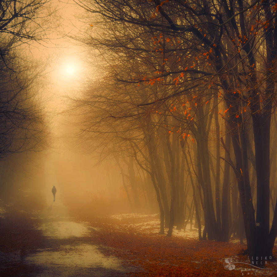 one missing moment by ildiko-neer