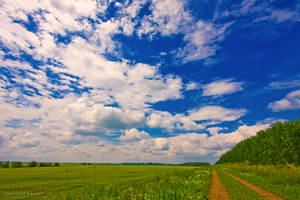 road to the clouds by ildiko-neer