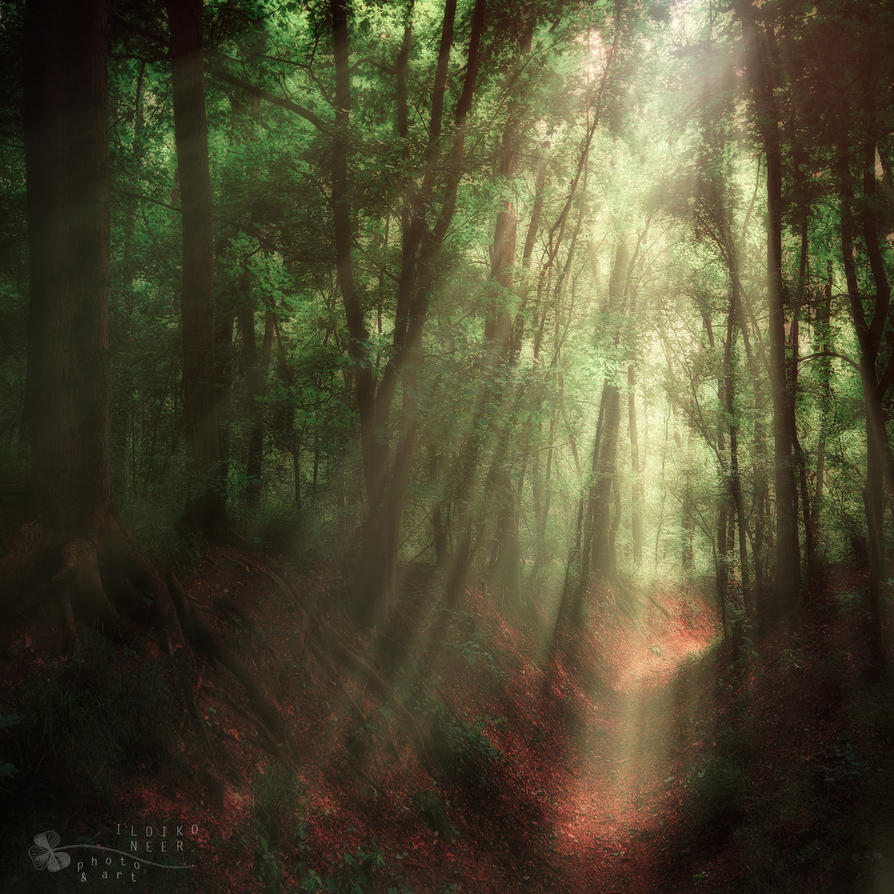 heaven comes... by ildiko-neer