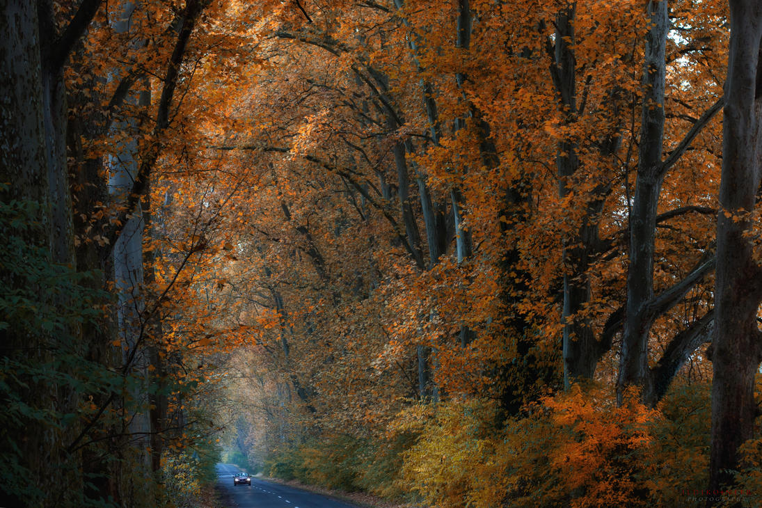we are small by ildiko-neer