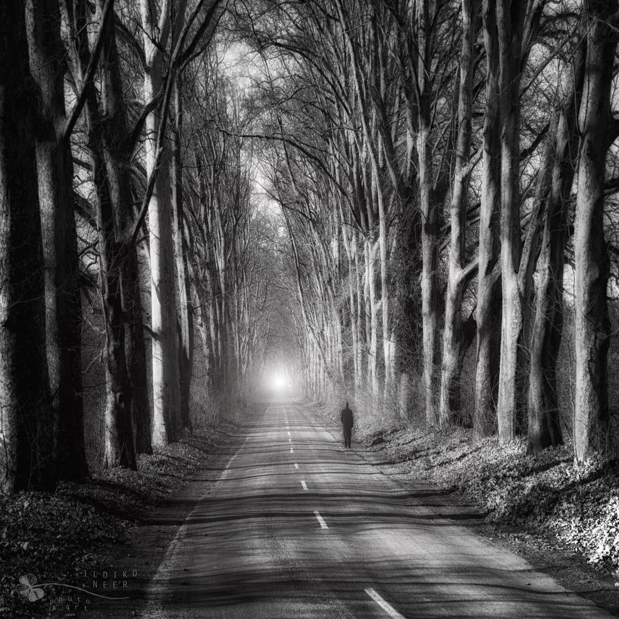 Are you ready for the truth? by ildiko-neer
