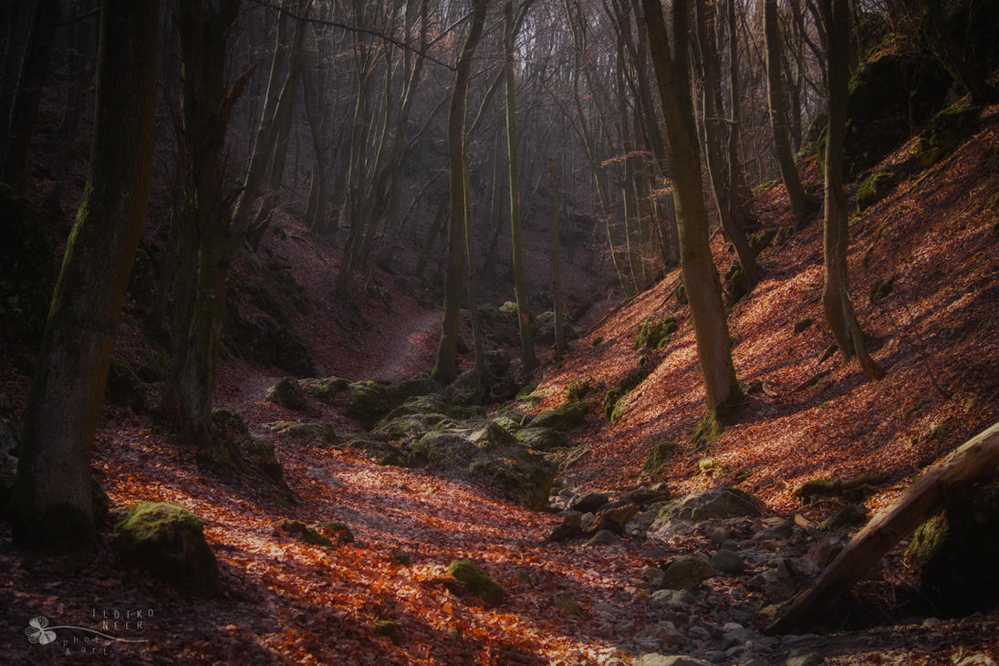time before by ildiko-neer