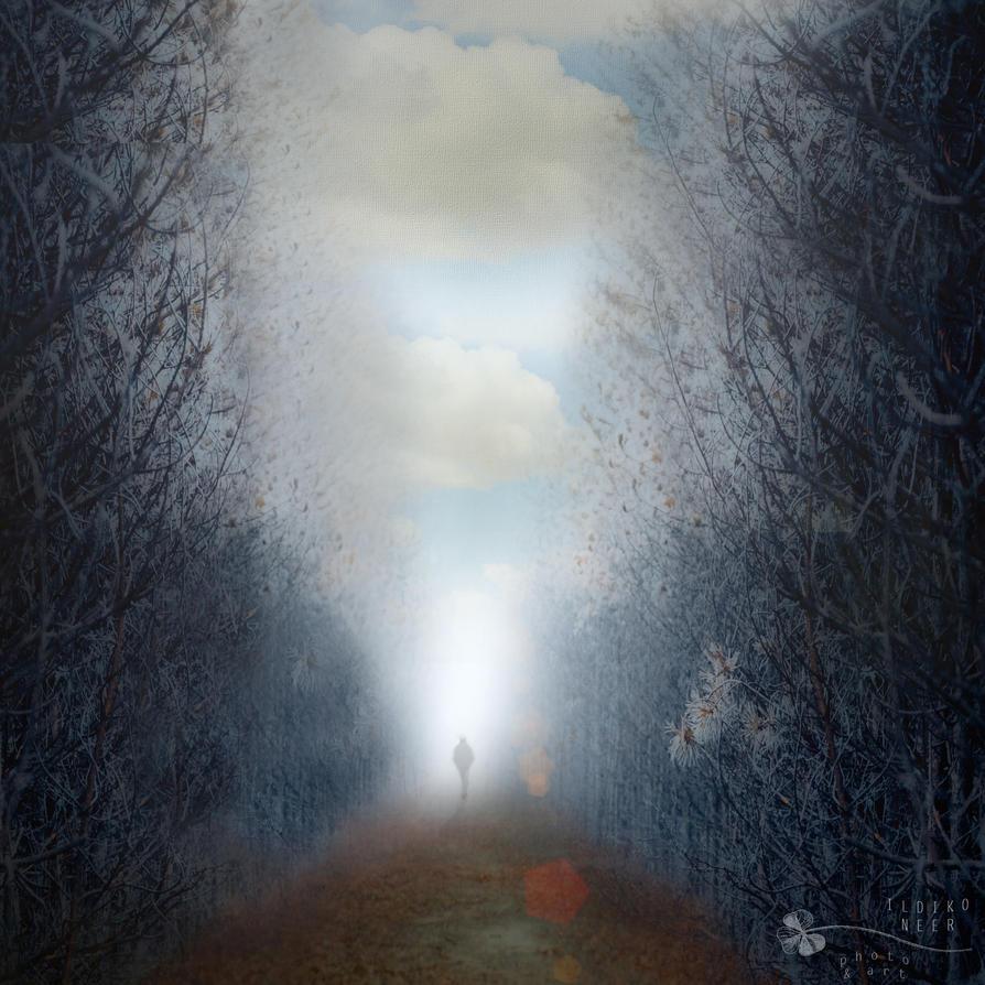 separated world by ildiko-neer