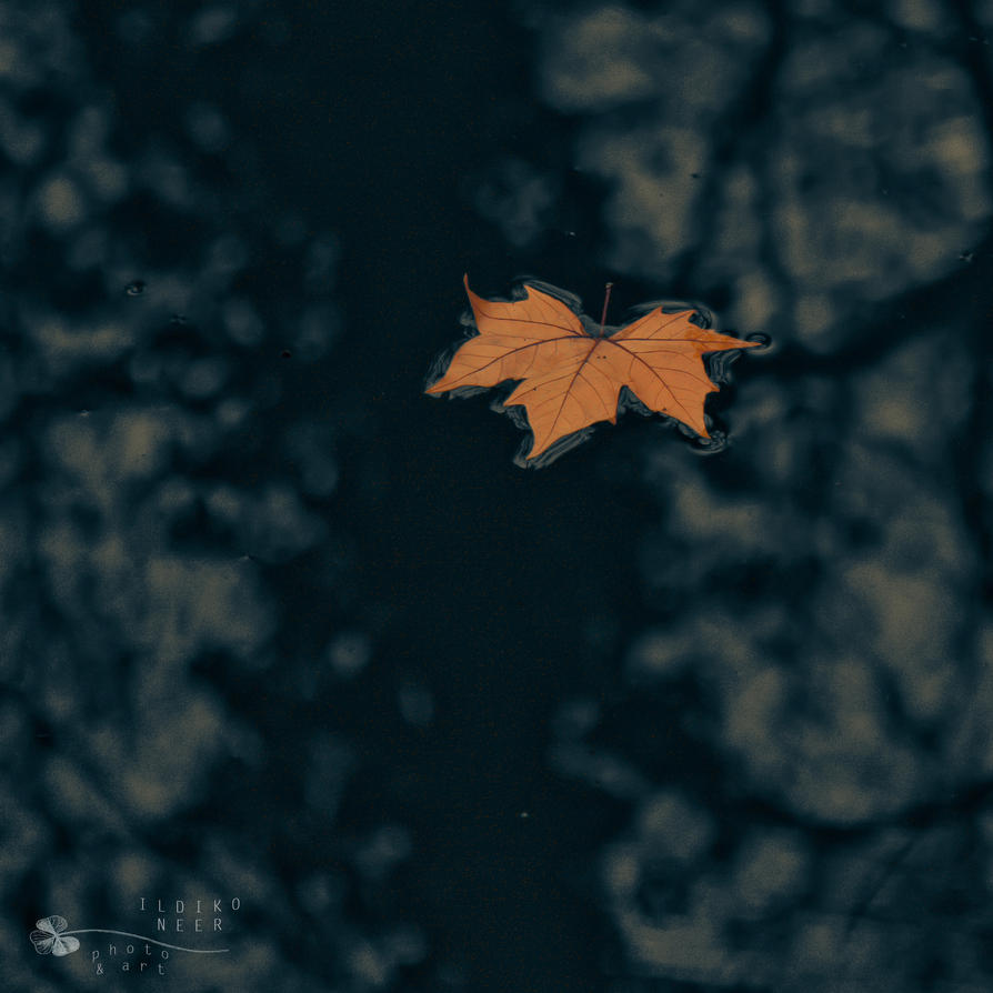 big water of life by ildiko-neer
