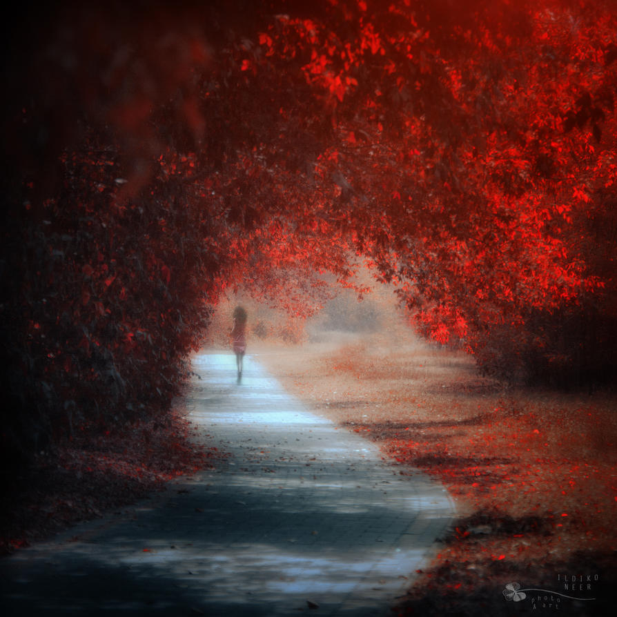 Lost innocence by ildiko-neer