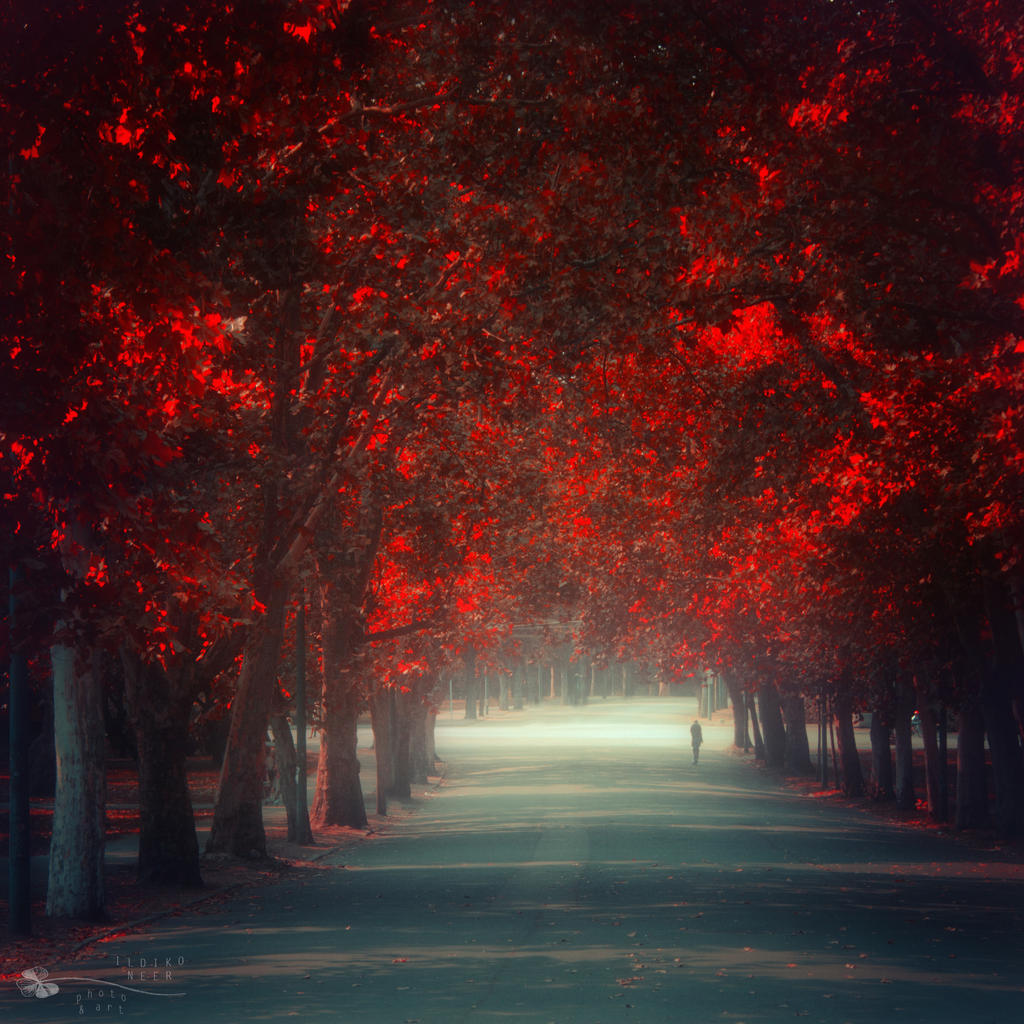 Let me go... by ildiko-neer