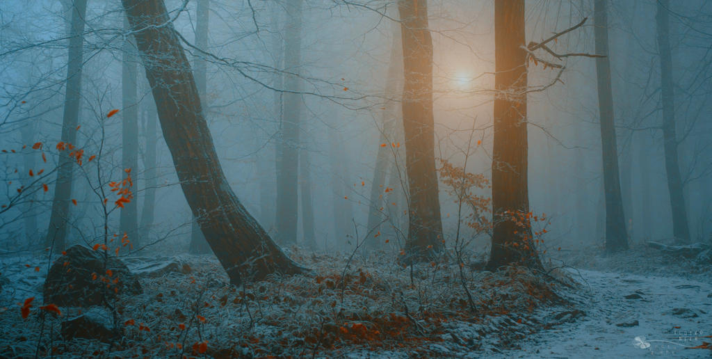 Keep that moment for a while by ildiko-neer