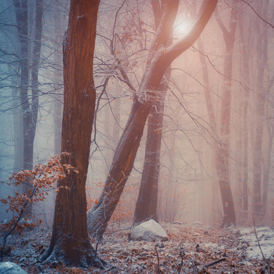 Lost battle by ildiko-neer
