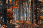 Painting Forest
