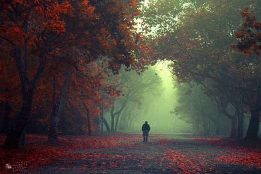 Walking Stranger