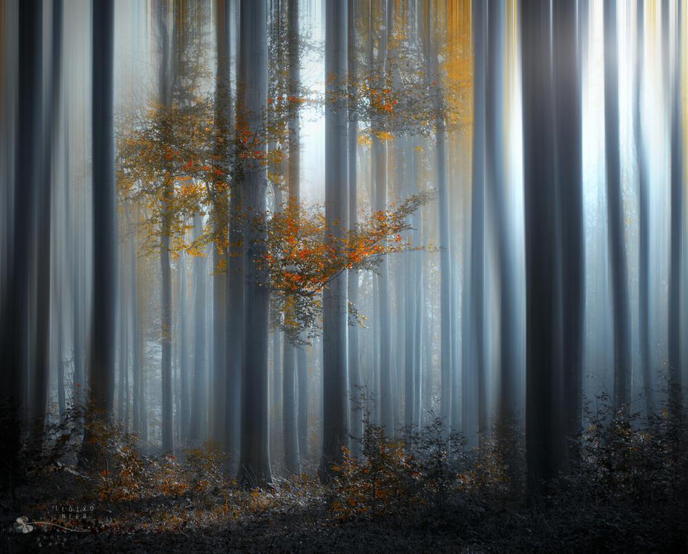 Between Ghosts by ildiko-neer