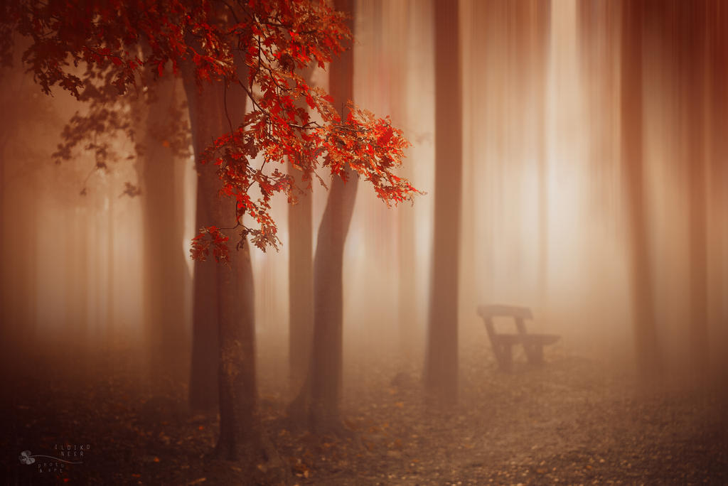 What About Us by ildiko-neer