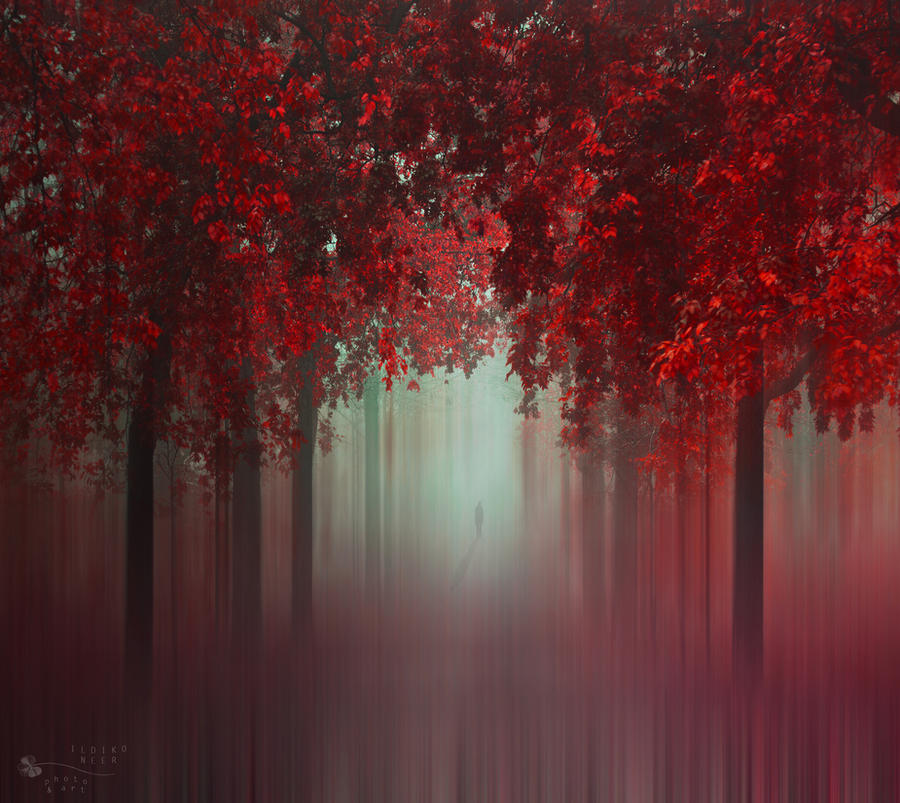 Out of Love by ildiko-neer