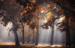Heaven by ildiko-neer