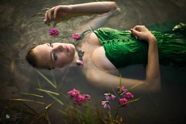Between Flowers by ildiko-neer