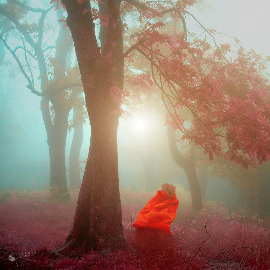Run With Me by ildiko-neer