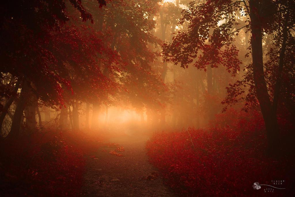 Bloody Dreams by ildiko-neer