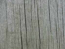 Texture 6 by Henker144