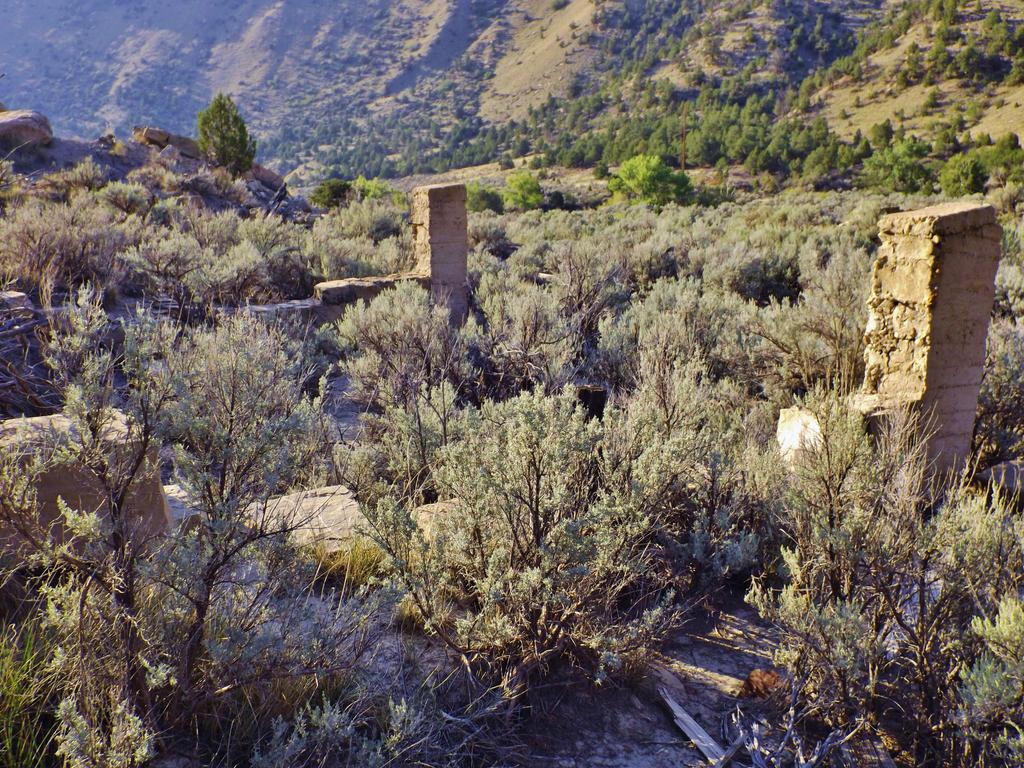 Spring Canyon series: Peerless by Raptorguy14