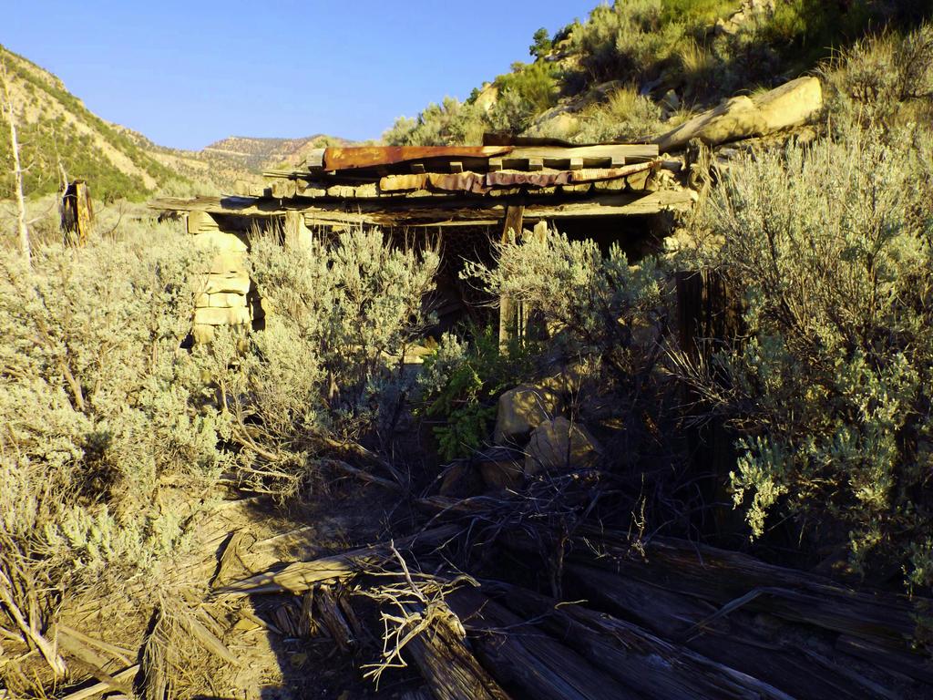 Spring Canyon series: Peerless shack by Raptorguy14