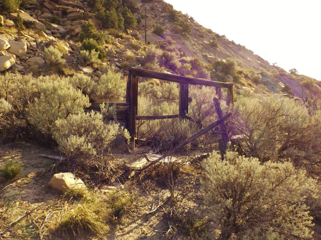 Spring Canyon series: Peerless ruin by Raptorguy14