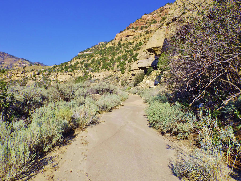 Spring Canyon series: Spring Canyon walking trail by Raptorguy14
