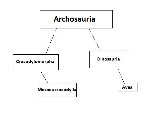 Dinosaur and crocodile evolution by Raptorguy14
