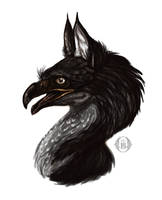 Black gryphon portrait by MartyDeath