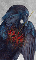 the Midnight Raven