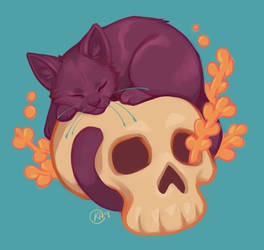Catnap by koyt