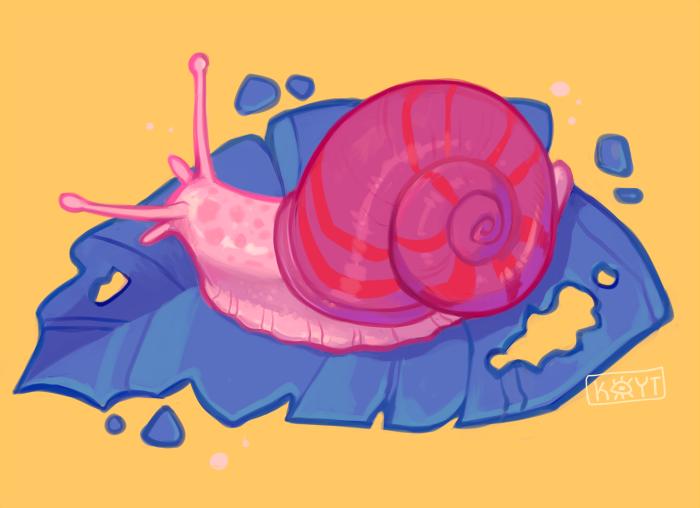 Snailadelic by koyt