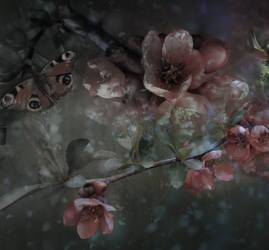 Fleurs et bourgeons