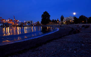 Blue Moon Over Crab Park by nyxchaotica