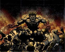 Logan Berserker Rage by Boteyas