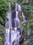 152/365 waterfall
