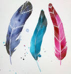 feathers IV