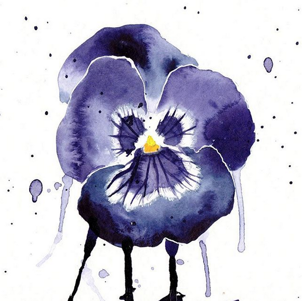 pansy watercolor by excentric on DeviantArt